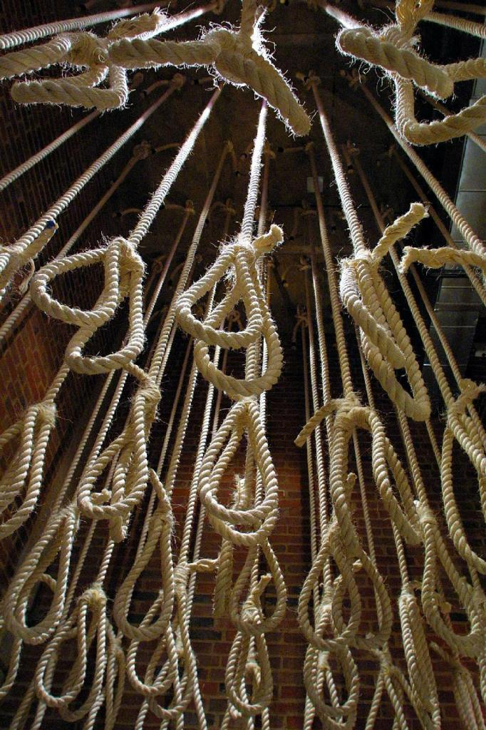 many-nooses-rope