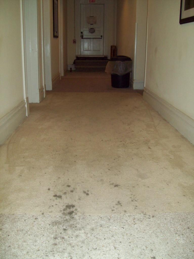 2nd-flr-carpet-chambers-hotel-apollo