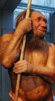 Neanderthal-Neanderthal-museum-Mettmann-Germany