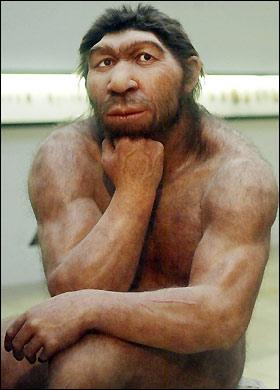 Neanderthal_280_470743a