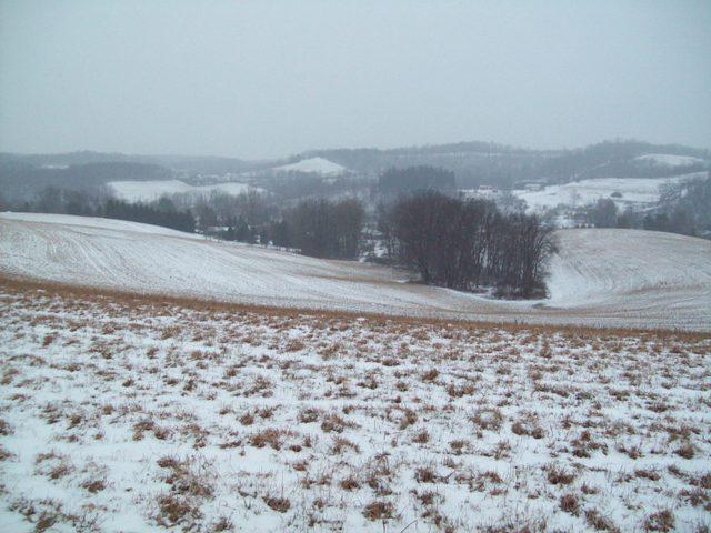 Thompsons Meadow winter