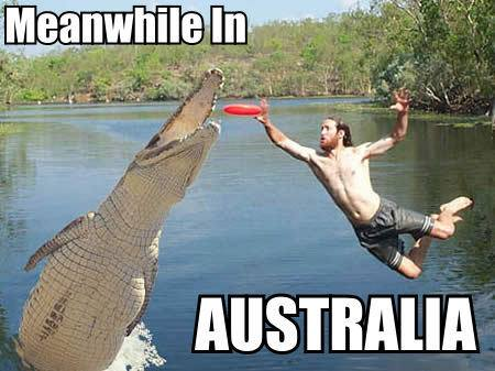 australia-humor-crocodile-man-go-for-frisbee