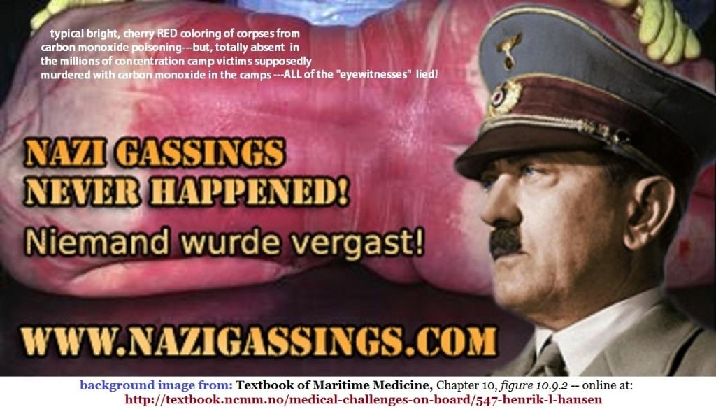 fritz-berg-nazi-gassings-banner