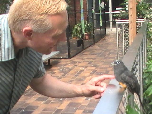 jdn-national-aviary-touches-bird