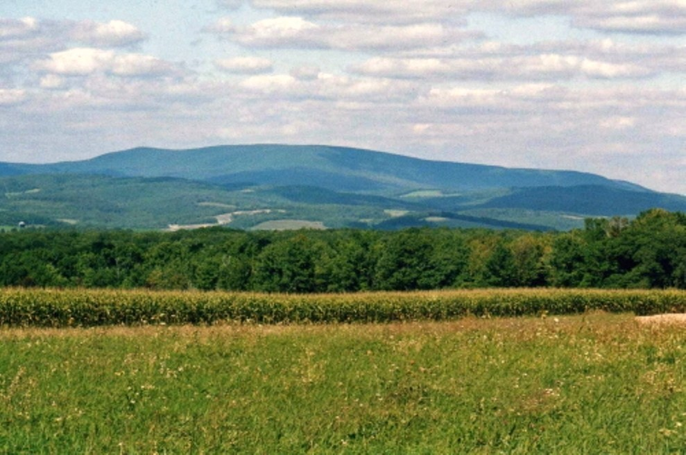 Blue Knob Mountain
