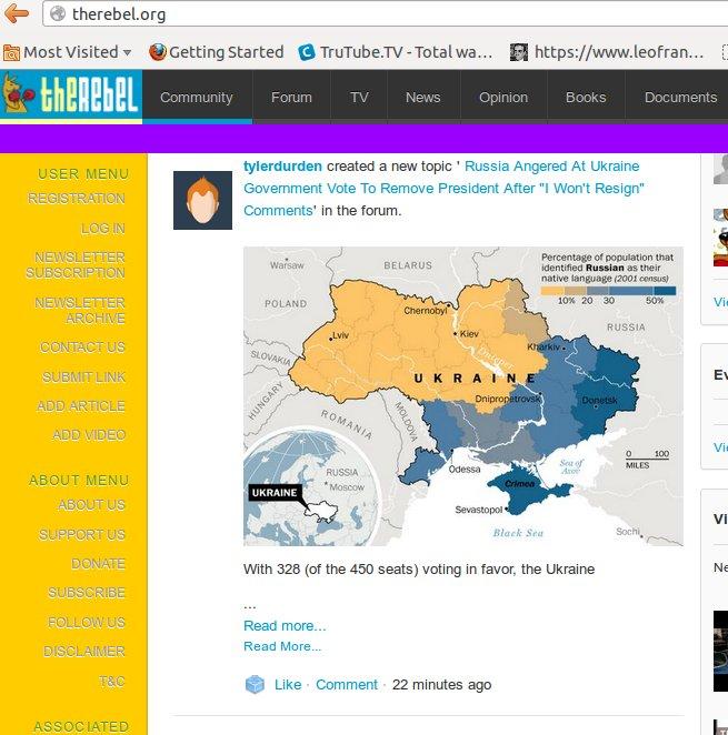 rebel-org-homepage-feb-22-2014
