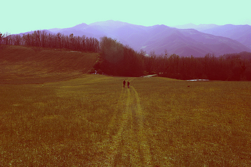 red-hills-of-georgia