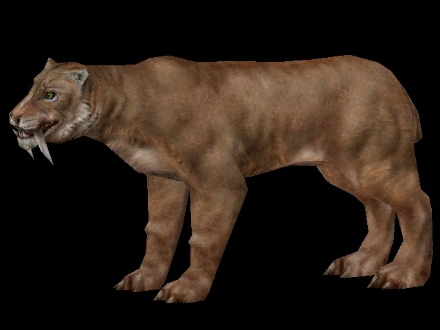 smilodon-saber-tooth