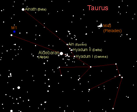 taurus-major-stars
