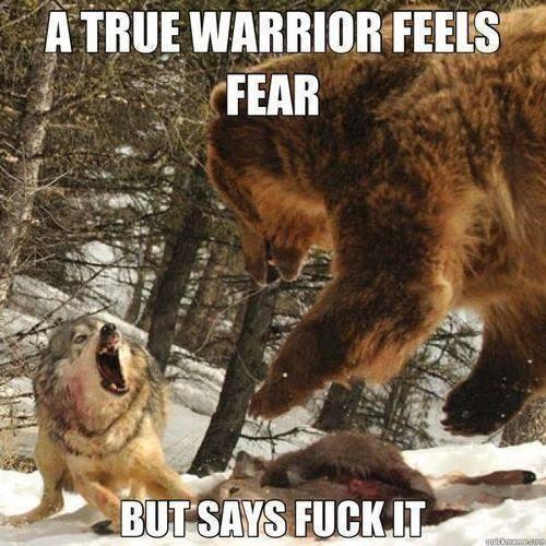 true-warrior-fear-fuck-it-wolf-bear